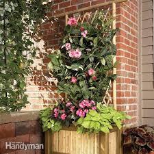bamboo planter box and trellis diy