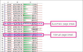 Insert, move, or delete page breaks in a worksheet - Excel