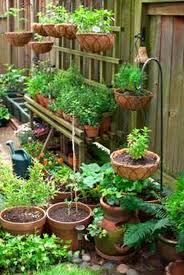 Vegetable Garden Design Plans Philippines | The Garden Inspirations