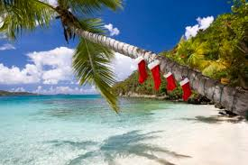 Image result for christmas stocking on palm tree
