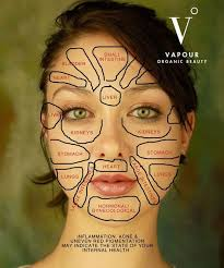 Chinese Face Map How Organs Link To Your Face Health