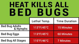 16 Bed Bug Heat Thermometer Bed Bug Temperature Chart