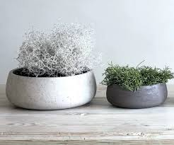 large cement planters. Cement Planters For Sale Stone By Idyll Home Large