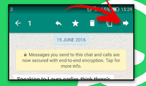 How Do You Forward A Text Whatsapp How To Forward A Text Picture Video Or File To Another