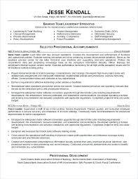 Bank Teller Description For Resumes Bank Manager Sample Resume Podarki Co