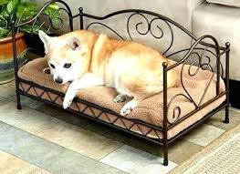 outdoor dog bed with canopy – ruscable.info