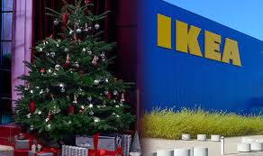 Cheapest Christmas Trees Ikea Offer Not To Miss Express Co Uk