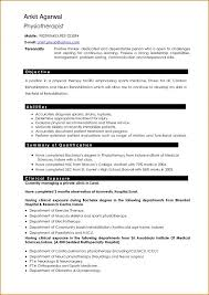 How To Write A Resume Mesmerizing How To Write Resume For Professional