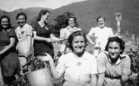Teen's roles during world war ii