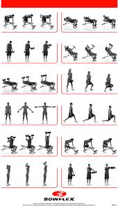 Bowflex Exercise Wall Chart 78 Matter Of Fact Bowflex Charts