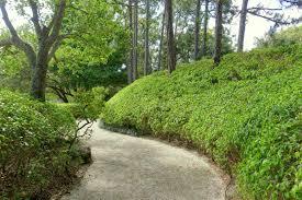 file walkway morikami museum and japanese gardens palm beach county florida dsc03348 jpg