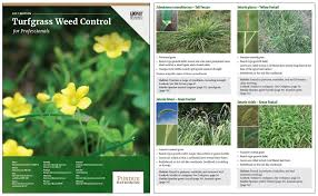 Purdue Turf Tips 2017 Turf Weed Control For Professionals