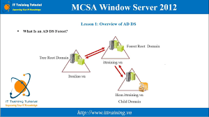 Mcsa 2012 Module 2 Introduction To Active Directory Domain Services