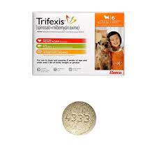 where to buy trifexis cheap. Delighful Trifexis Trifexis For Dogs 10120 Lbs 6 Chewable Tablets Orange Intended Where To Buy Cheap