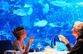 hydropolis underwater resort hotel. Hydropolis Underwater Resort Hotel B