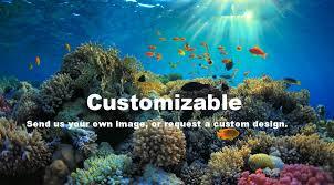 Aquarium Backgrounds Aquarium Vinyl