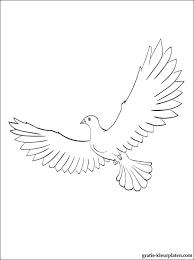Afbeelding Duif Kleurplaat Vrede Duif Illustratie Kleurplatenlcom