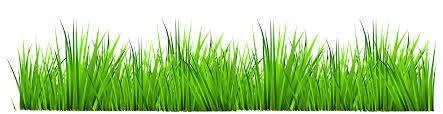 grass transparent background. Clipart Grass Transparent Background T