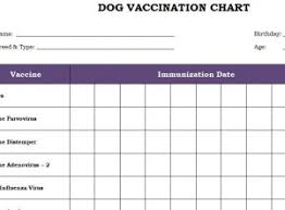 Printable Dog Vaccination Chart Dog Vaccination Chart Template Haven