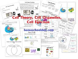 Free Earth Science Packet on the Layers of the Atmosphere (19 ...