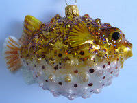 Fischewasserwelt Verrückte Welt Aus Glas