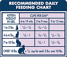 20 Systematic Cat Feeding Chart