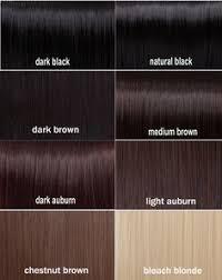 28 Albums Of Brown Schwarzkopf Hair Color Chart Explore