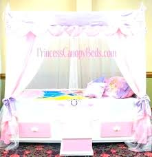 girl canopy tent – cleanpaws.co