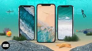 15 Best beach iPhone wallpapers in 2021 ...