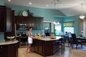 What Color To Paint Kitchen With Dark Cabinets New Decorating