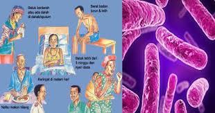 obat penyakit tbc herbal