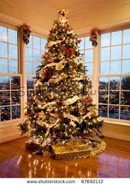 Christmas Tree Window  Christmas Lights DecorationChristmas Tree In Window
