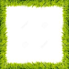 Fresh Green Grass Frame On White Background Stock Photo Picture And