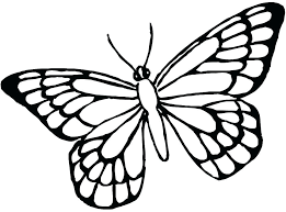 Coloring Butterfly Coloring Pages For Adults To Print Free
