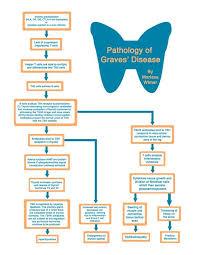 Hypothyroidism Pathophysiology Flow Chart Graves Disease Flowchart Thyroid Health Graves Disease