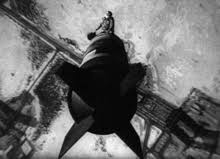 dr strangelove  aircraft commander major t j kong riding the bomb down