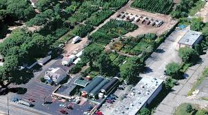 now with 3 locations the garden dept is the tri state area s largest nursery operation