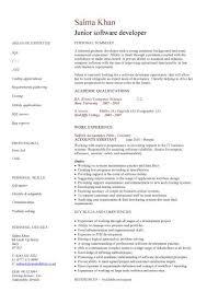 sample resume writing junior software developer cv sample resume writing curriculum
