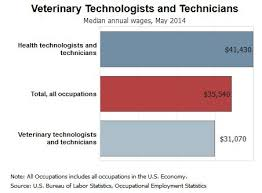 Veterinarian Technician Salary Veterinary Technician Salary Veterinary Technician Training