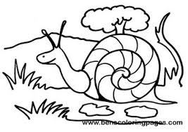 Small Picture Snail coloring page