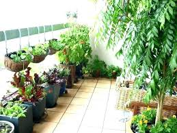 hanging vegetable garden containers potted ideas nice apartment balcony signs you re in hanging vegetable garden