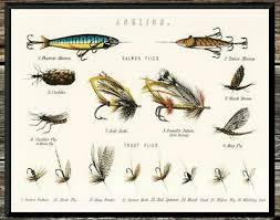Fly Fishing Flies Chart Classic Trout Bass Flies Chart Vintage Fishing Vintage 8x10 Photo Print Ebay