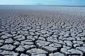Image result for elijah drought