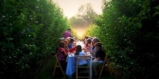 farm to table dining experiences