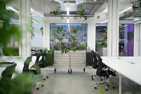 green office interior. Office Biophilia Design Green Interior ,