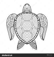 Elegant Cute Turtle Coloring Pages Spurlme