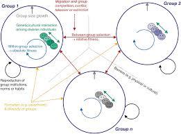 And Sciences Natural Bridging part Evolution Human Iii Social Hwq5qT4x