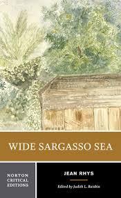 com wide sargasso sea norton critical editions  com wide sargasso sea norton critical editions 9780393960129 jean rhys judith l raiskin books