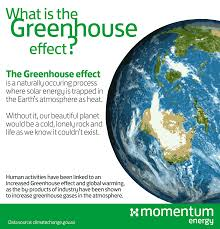 green house effect what is the greenhouse effect