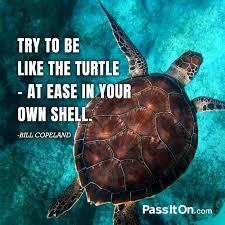 sea shell quotes try to be like the turtle at ease in your own shell